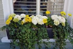 planters (2)